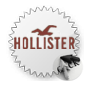hollisterco-icon